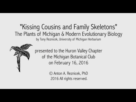 Kissing Cousins and Family Skeletons: The Plants of Michigan and Modern Evolutionary Biology