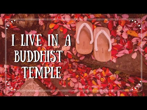 I live in a Buddhist temple