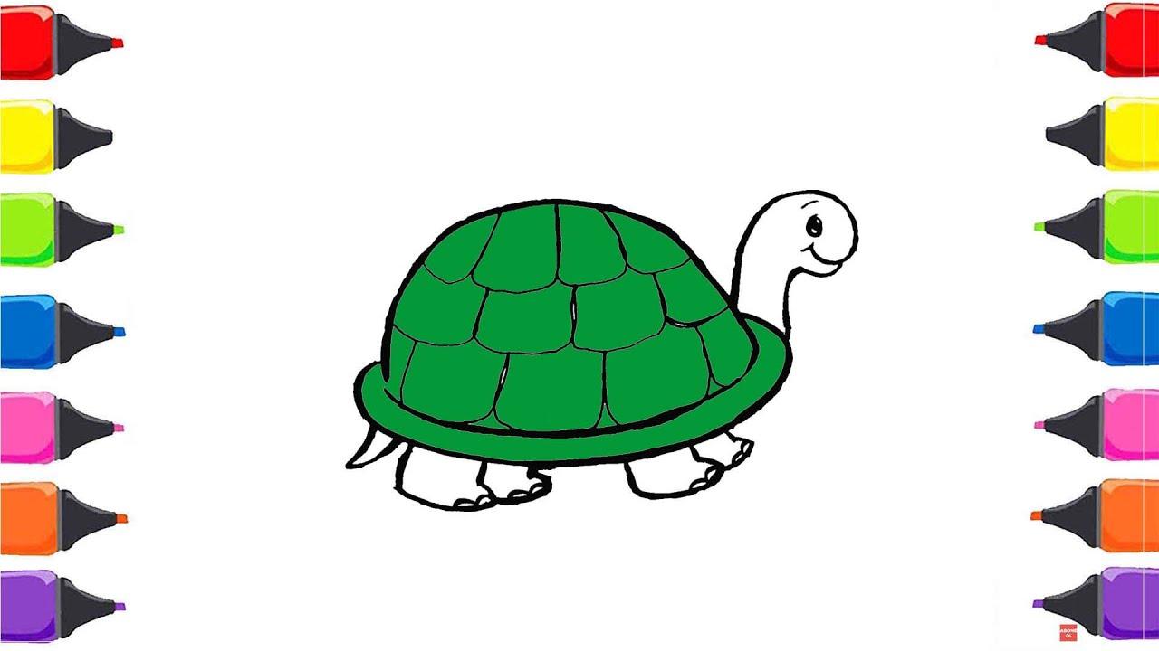 Kaplumbaga Boyama Renkleri Ogreniyorum Boyama Sayfasi Sihirli