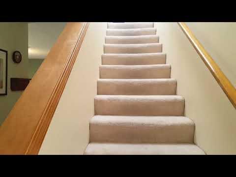 Premium Carpet Care Gladstone - YouTube