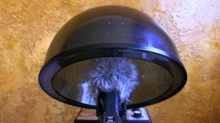 "8hrs Commercial Bonnet Hair Dryer  ""Sleep Sounds"""