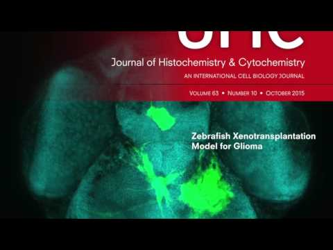 Journal of Histochemistry & Cytochemistry slideshow