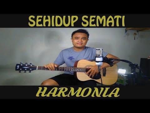 Harmonia - sehidup semati (cover by wijaya nusa)