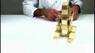 Building For Kids - Watch The Tegu Genius Build A Meerkat Out Of Tegu Blocks