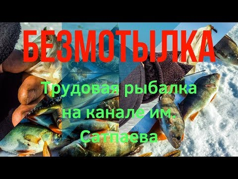 #БЕЗМОТЫЛКА. Трудовая рыбалка. 112-й км канала им. Сатпаева