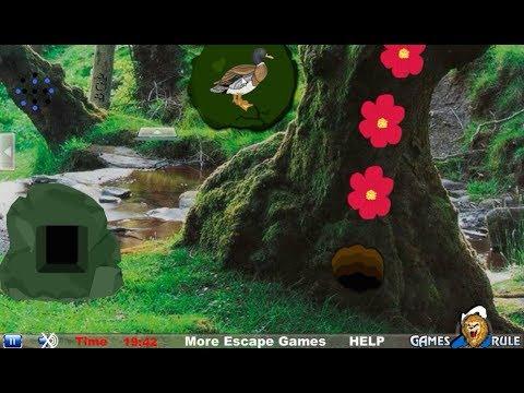 Temperate Rainforest Escape walkthrough Games2Rule.