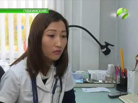 Антирабическая вакцина и прививка от бешенства для людей