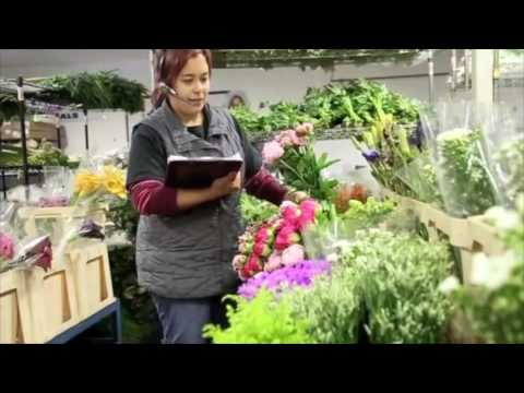 Mayesh Wholesale Florist: We Take the Extra Step