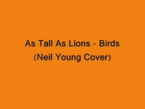 As Tall As Lions - Birds (Neil Young Cover)