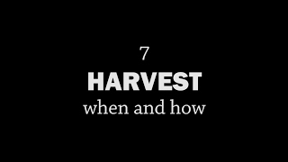 Rotationally Raised - Harvest: When and How