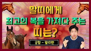 말띠와 최고의 궁합인 띠는? Feat 말띠 띠궁합
