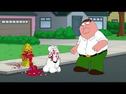 Download Family Guy - Peter broke Brian's Teeth and Nose
