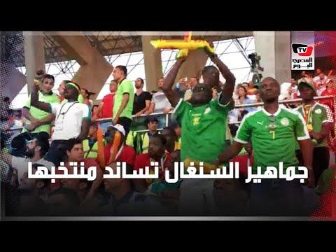 المصري اليوم:جماهير السنغال تساند منتخبها في مباراة نصف النهائي أمام تونس بـ«ستاد الدفاع الجوي»