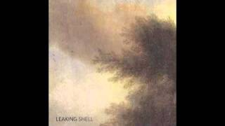 Leaking Shell - Kitchen Session