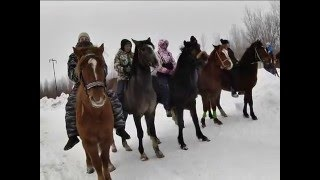 В городе состоялись конно спортивные соревнования  Люди, лошади и проблемы