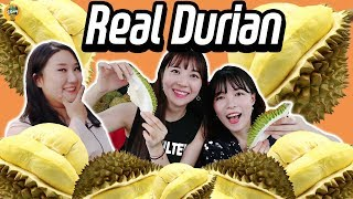 Video Korean Girls Tried 'Raw Durian' for the First Time!!!!|Blimey 블라이미 download MP3, 3GP, MP4, WEBM, AVI, FLV Januari 2018