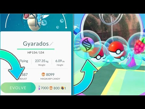 假設Pokemon Go可以Mega退步的話,會是什麼樣子?「挖欸噴火龍勒!」