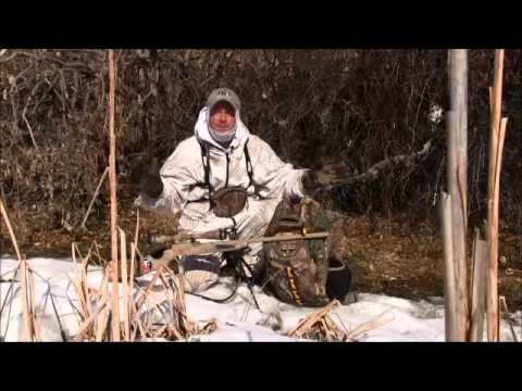 Tips For Coyote Hunting In Windy Conditions