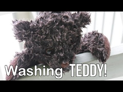 How we wash our stuffed animals | Outdoor fun for kids