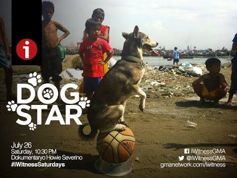 """Thumbnail: I-Witness: """"Dog Star"""", a documentary by Howie Severino"""