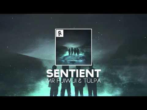 Mr FijiWiji & Tülpa - Sentient