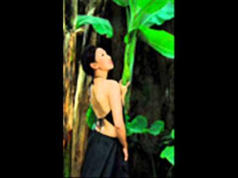 Tuong Tu Nguyen Binh Kim Dung.wmv