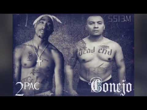 Conejo Ft 2Pac-Constantly Armed [RMX]