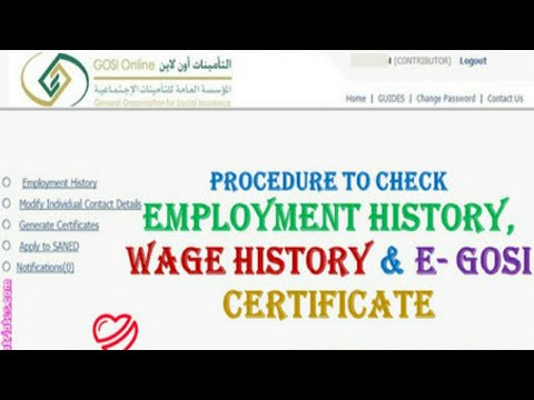 Check Your Employment and Salary History In KSA