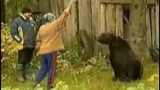 Медведь хочет секса)