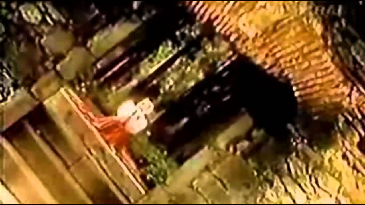 la calle de las sirenas kabah: