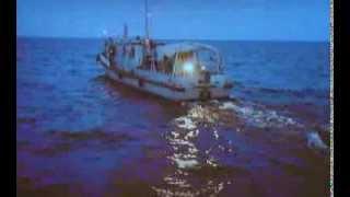 Добре відпочили, давно у мене такої рибалки не було...