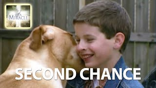 Second Chance - It's a Miracle - 6033