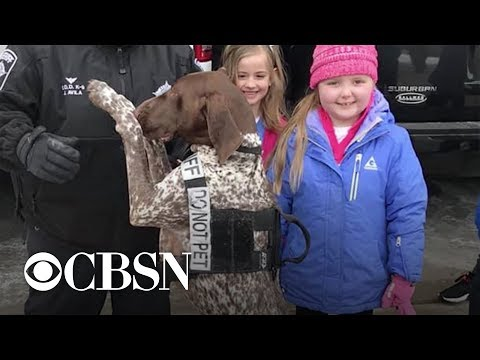 Girl with terminal cancer gets surprise visit from K-9 officers