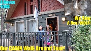 Our HOUSE TOUR Walk Around! Our CABIN Tour in Big Bear. We Saw a Real WOLF and BEAR!