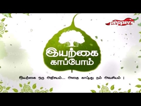 Iyarkai Kaappom  Peppers TV  Social Issue Advertisement