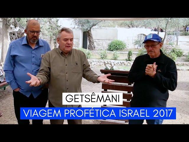 Viagem Profética ISRAEL - Getsêmani - Ministério Intimo do Pai