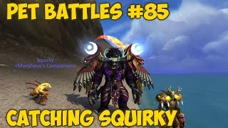Pet Battles #85 - Catching Squirky