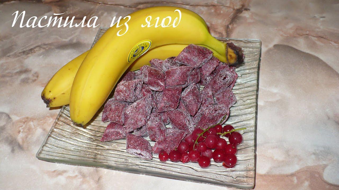 Пастила из ягод в сушилке Ezidri