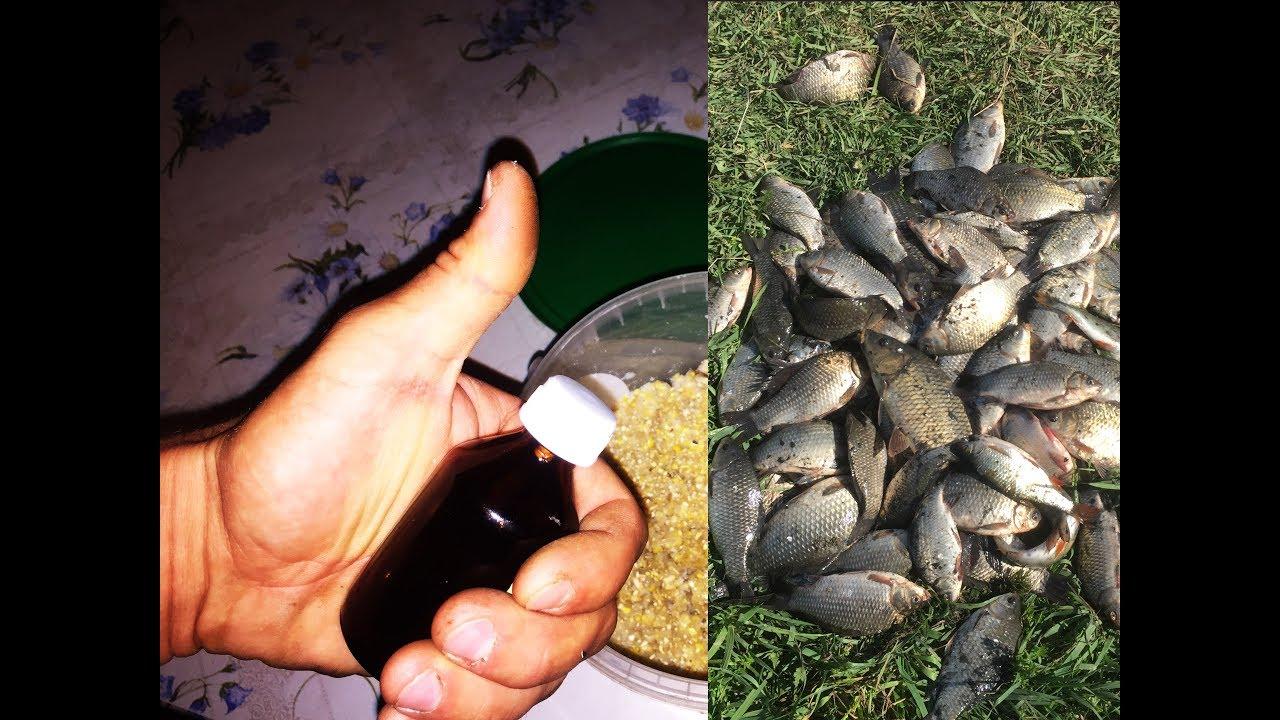 секреты рыбалки на карася осенью