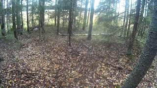 Охота на рябчика с подхода весна 2019