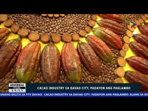 NEWS BREAK: Cacao industry sa Davao City, padayon ang paglambo