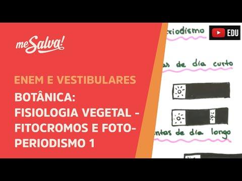 me-salva!-bot34---botânica---fisiologia-vegetal:-fitocromos-e-fotoperiodismo-i