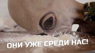 YC #16 - GOTIKO ALEX, РЕН-ТВ, ЛИДЕРЫ МНЕНИЙ