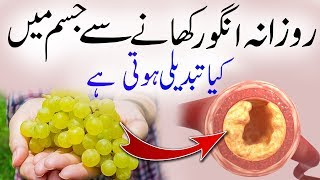 If You Eat Grapes Daily What Happens In Your Body