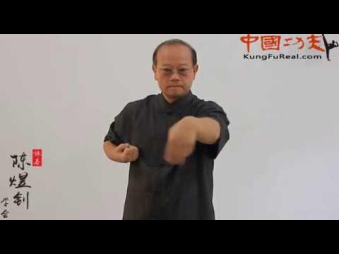 learning wing chun online----siu nim tao...