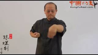 learning wing chun online----siu nim tao step by step practice