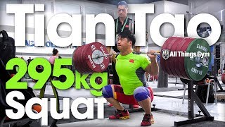 Tian Tao 🇨🇳 295kg / 650lbs Squat Session w/ 195kg C&J 2018 World Championships Training Hall [4k]
