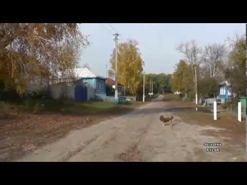 Курский край. Деревня Макеево. 30 лет спустя...