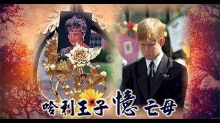 【微視蘋】哈利割心憶黛妃 婚禮暗飄亡母身影 | 台灣蘋果日報