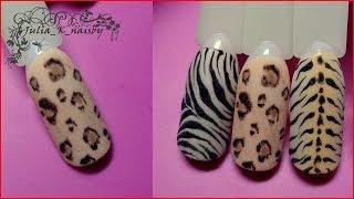 видео Леопардовый рисунок на ногтях